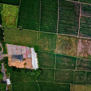 aerial-aerial-shot-aerial-view-1486464